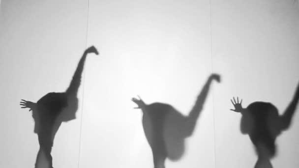 Schatten-Theaterschauspieler anzeigen Herde von Strauß