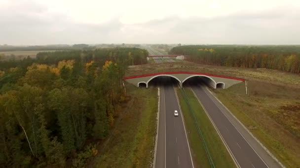 4 k letecký pohled pevninský most přes dálnici v Polsku. Zvířecí mosty pomáhají zvířata bezpečně, přes záchranu životů motoristy a volně žijící zvířata