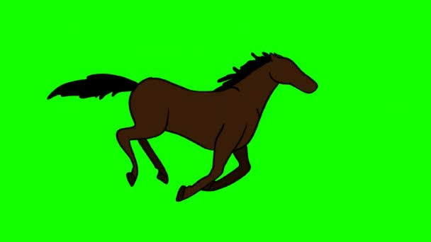 Running horse on the background
