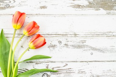 Empty wooden background with colorful flowers
