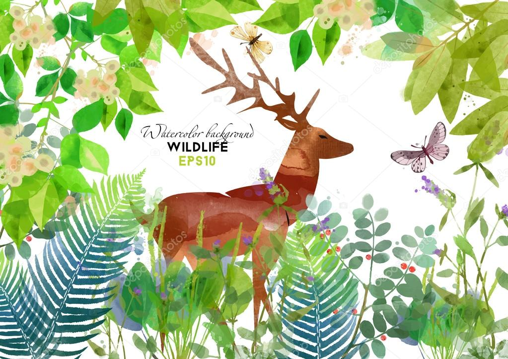 watercolor deer in forest stock vector c tatianadavidova 76454661 depositphotos