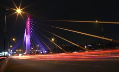 Pasupati Bridge
