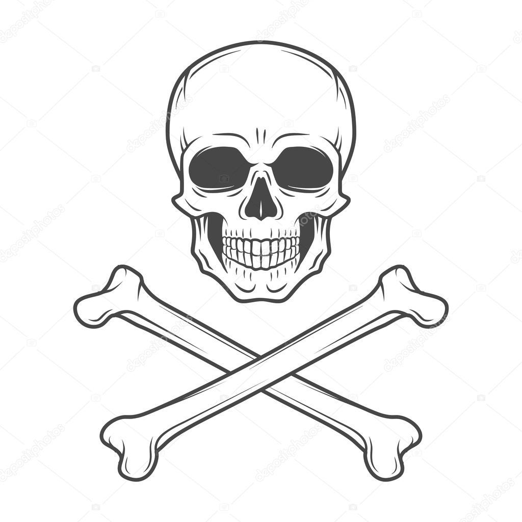 human evil skull vector jolly roger with crossbones logo