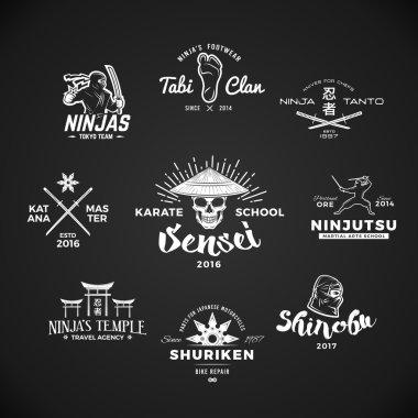 Set of Ninjutsu Logo. Sensei skull t-shirt illustration concept on gray background. Japanese Katana weapon insignia design. Vintage MMA badge.