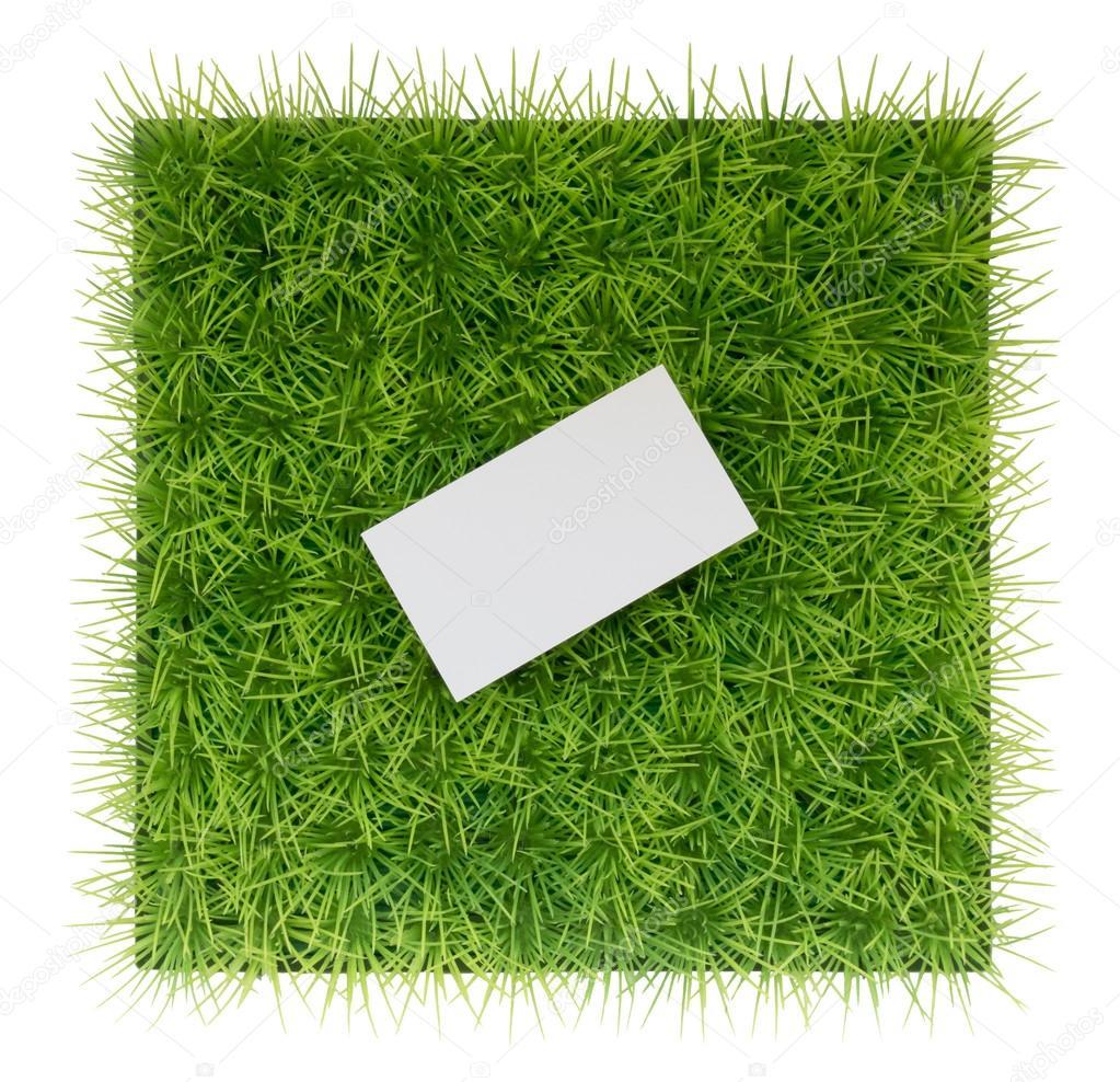 Fond Vert Naturel Avec Lherbe Verte Et Une Carte De Visite Image MamaPolina