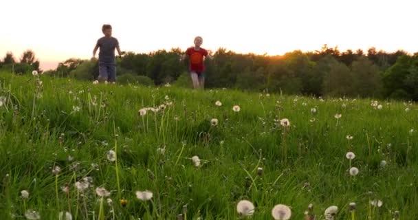 Děti běží přes Pampeliška pole