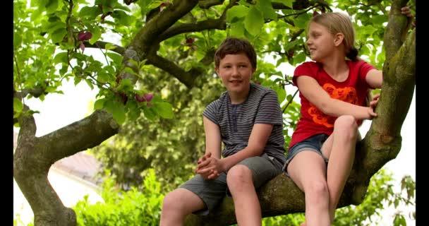 Chlapec a dívka na stromě baví