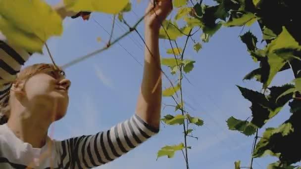 Mladá žena, péče o zahradu