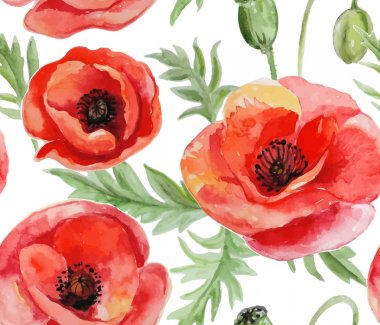 Seamless background with red watercolor poppies on white backgro