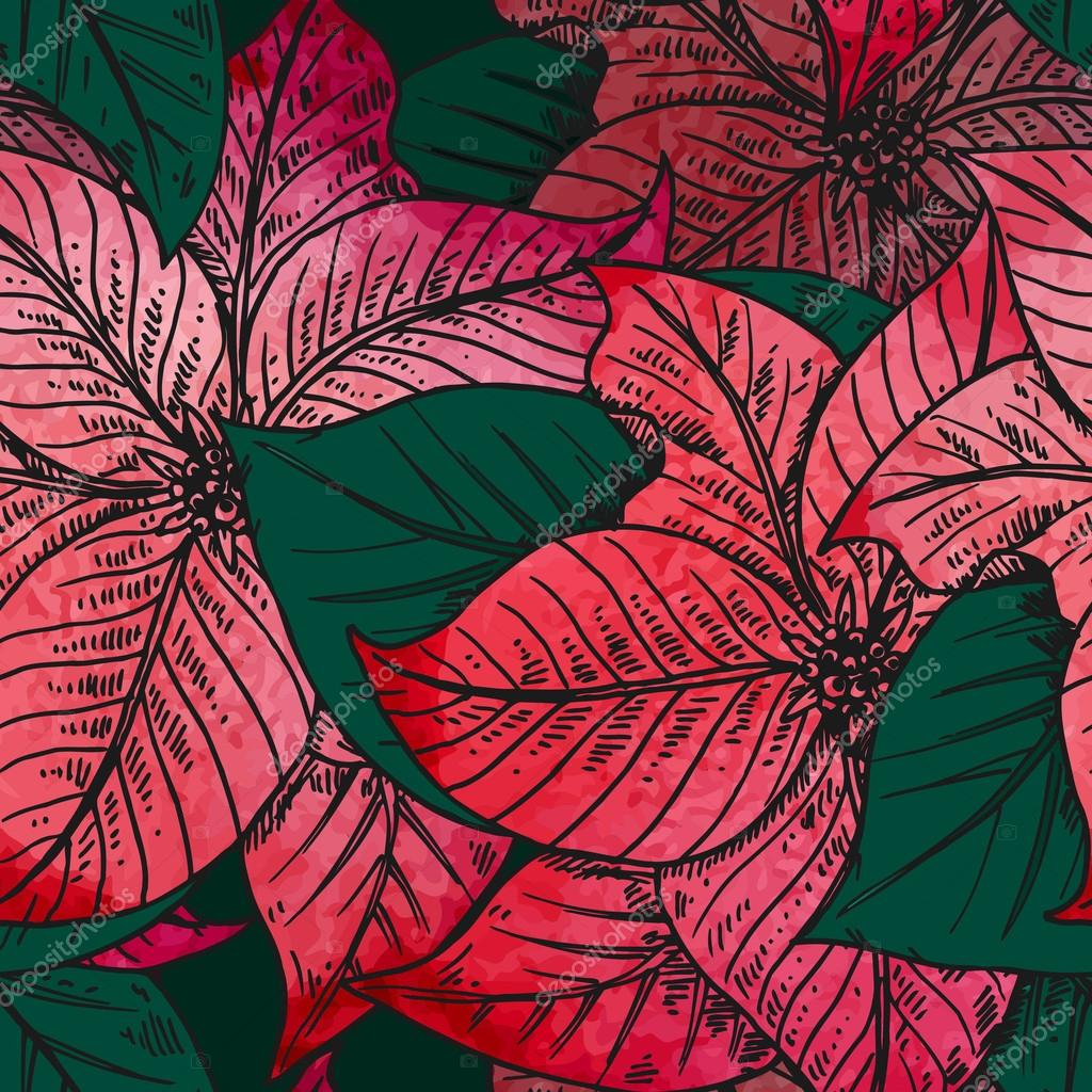 Vector seamless pattern with Hand drawn decorative poinsettia fl