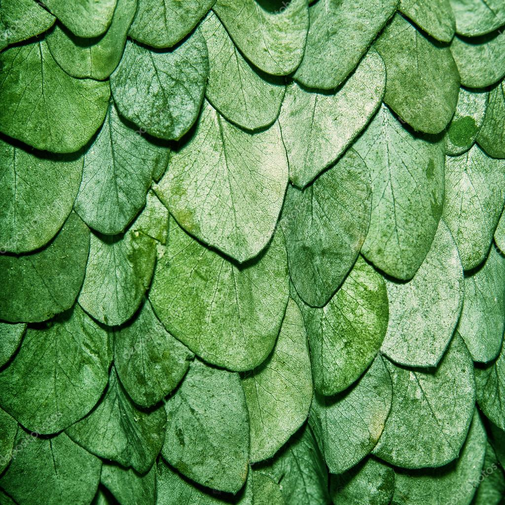 Green leaves background in the form of scales of a snake