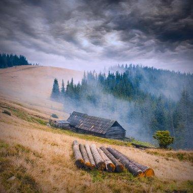 Carpathian misty mountains