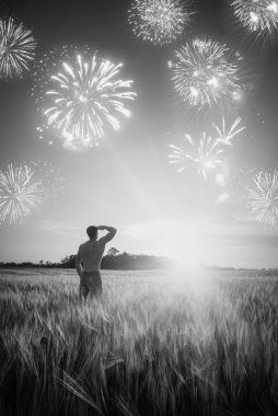 Firework in a wheat field. Black and white