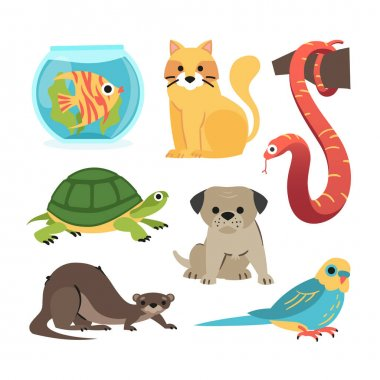 Different pets concept Vector illustration. icon