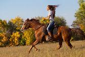 Fotografie Mädchen auf einem Pferd in Landschaft
