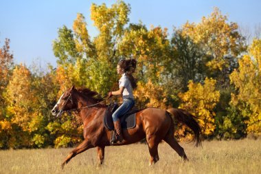 Girl riding a horse in countryside.