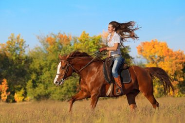 Girl riding  horse  on autumn field