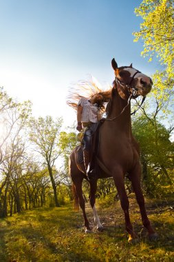 Girl riding  horse   in countryside
