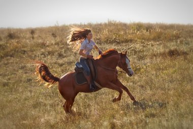Girl riding  horse  in countryside.