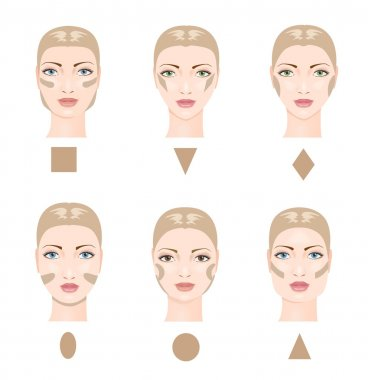 Contouring the face. Vector