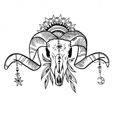 Ram Skull With amulets