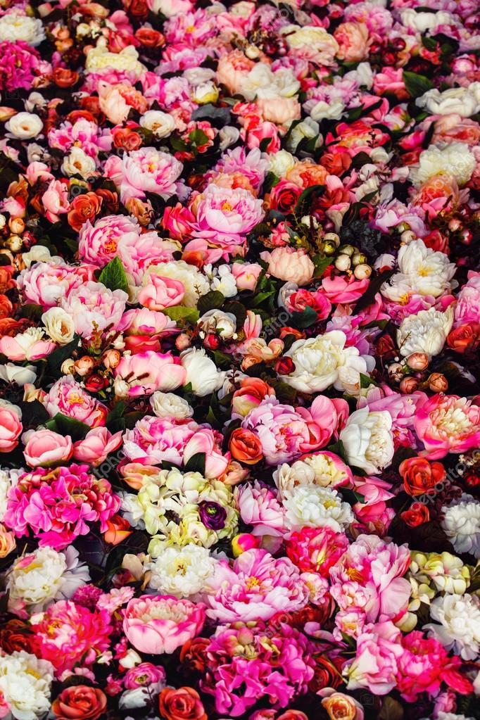 Immagine Verticale Di Bei Fiori Immagine Sfondo Con Incredibile Rose