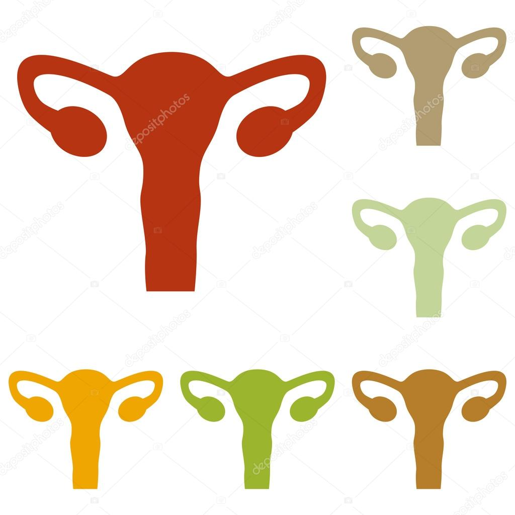 Menschlichen Körper Anatomie Gebärmutter Zeichen — Stockvektor ...