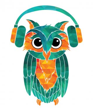Owl music fan