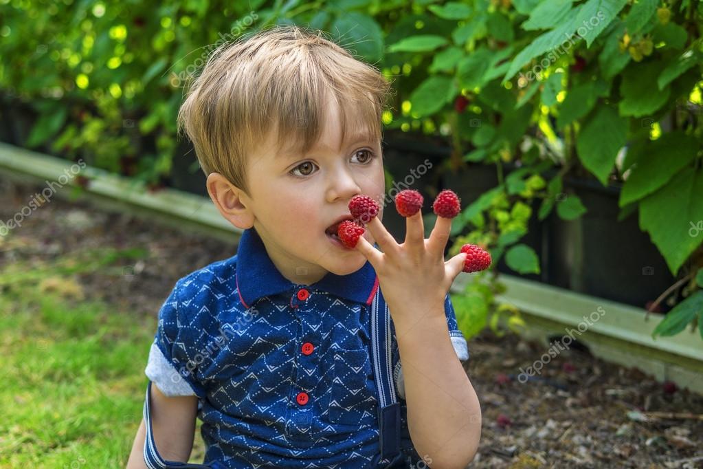 Beautiful boy eating raspberries