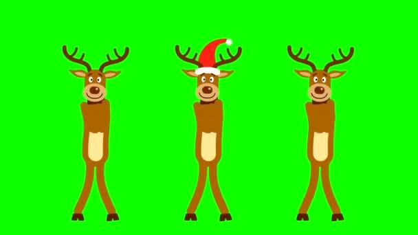 Három vörös sapkás és agancsos karácsonyi rénszarvas táncol zöld alapon. Looped animáció vágni a hátteret, hogy hozzon létre egy rajzfilm.
