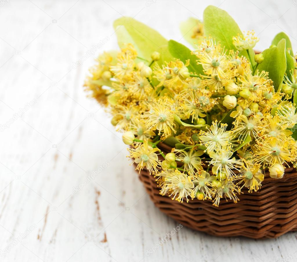 Linden flowers on a table