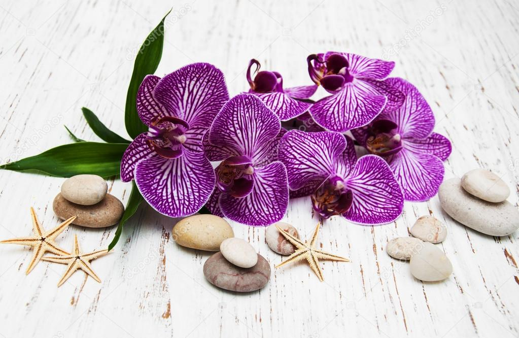 Orchids and massage stone
