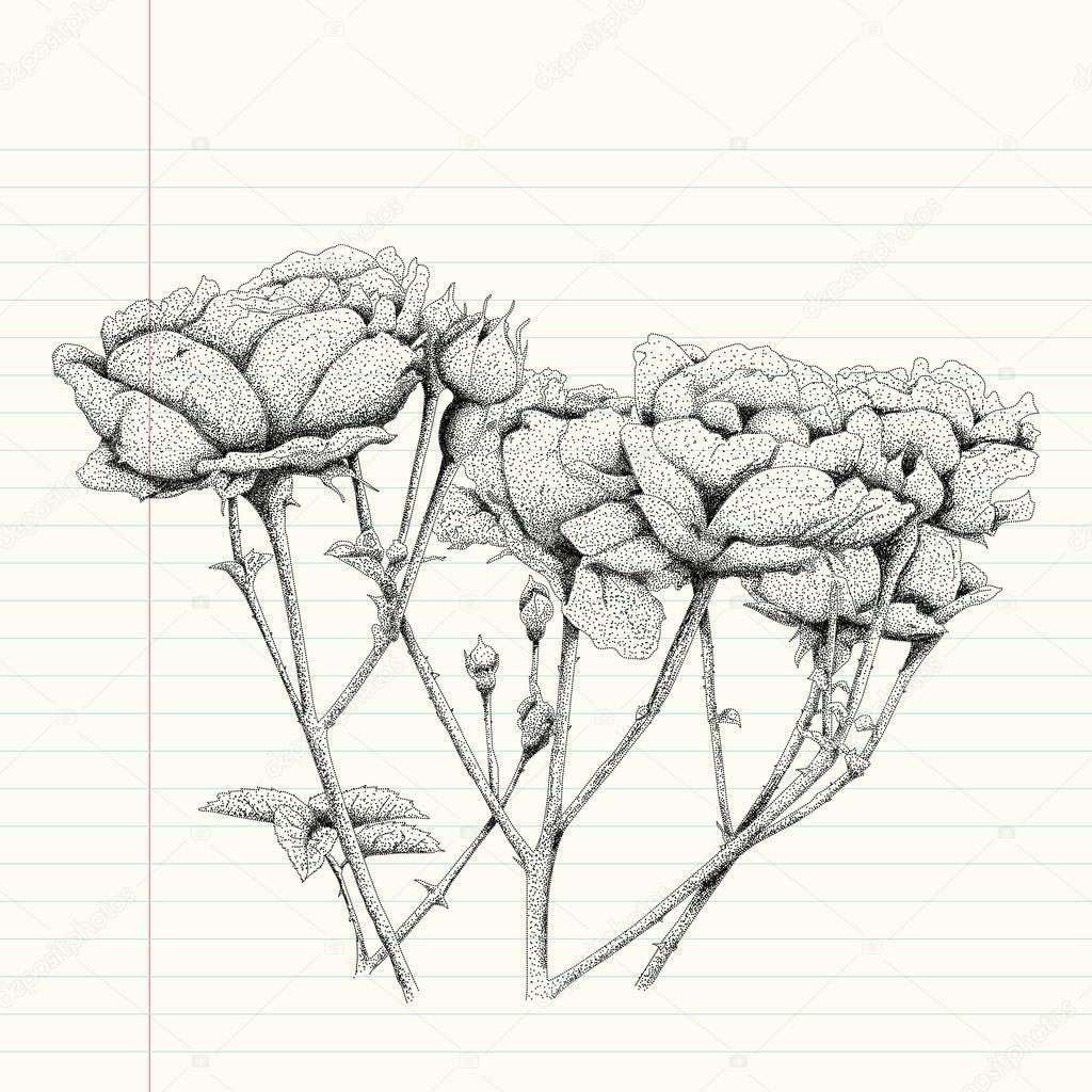 Pointillisme Dessin D Une Fleur Rose Image Vectorielle Seesawname