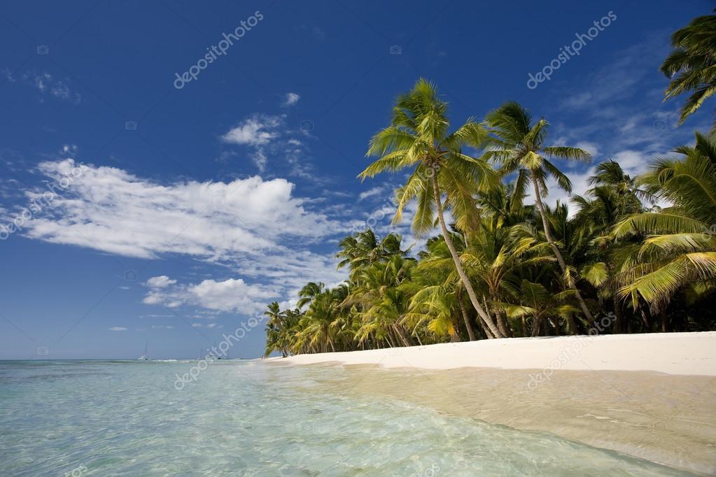 Dominican Republic, Beach on Saona island