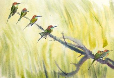 six small birds