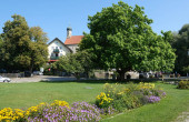 Park in Utting am Ammersee