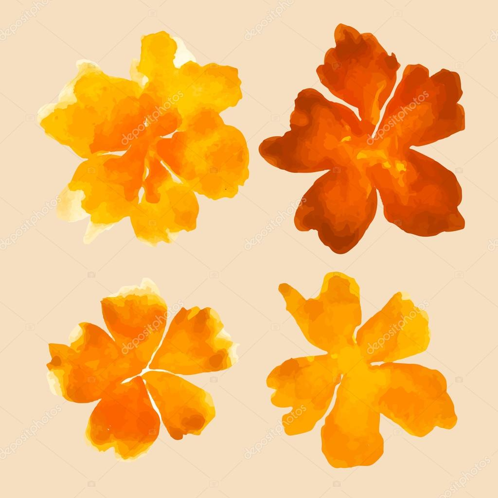 Watercolor flowers - orange