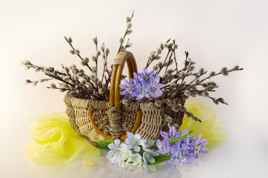 Bouquet with spring flowers and branches of a willow in a basket on a white background.