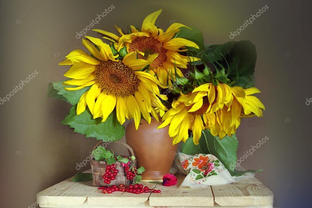 Sunflowers and berries .