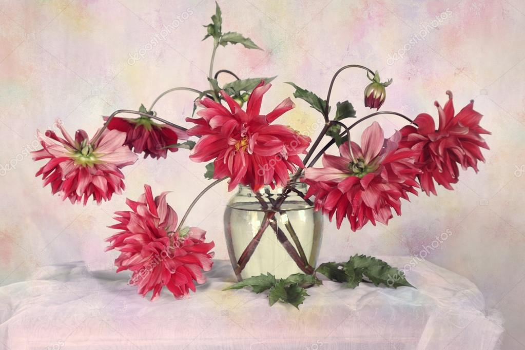 Red dahlias in a glass vase