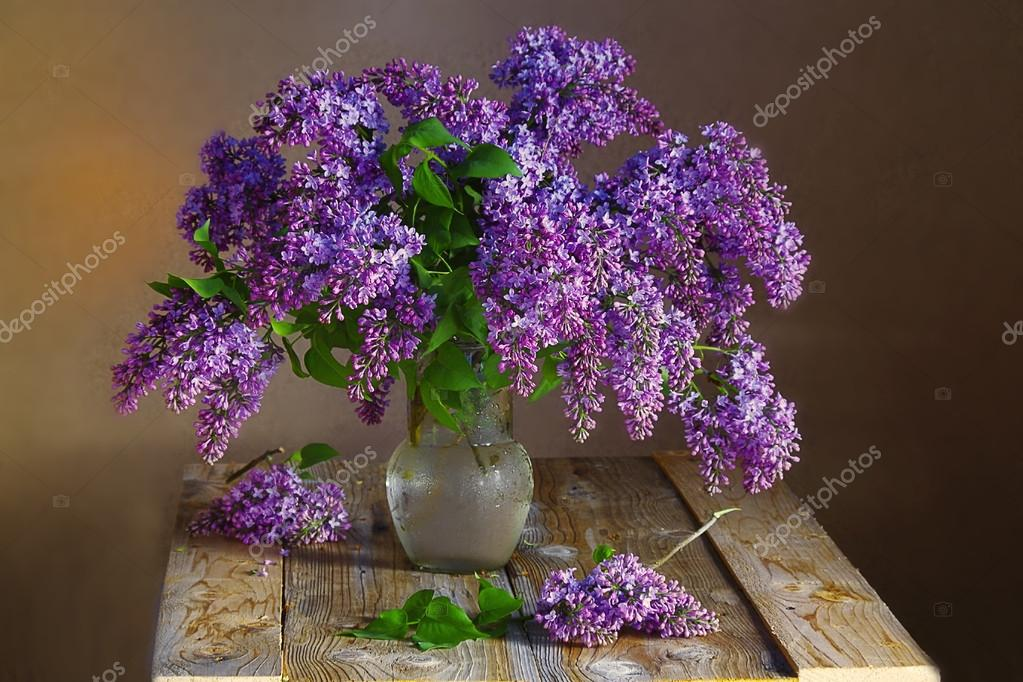 Bouquet of a blossoming lilac lime .