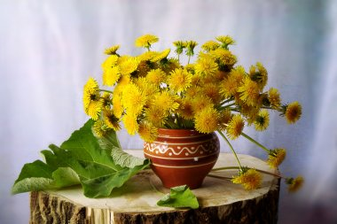 Still life with bouquet of spring flowers dandelion
