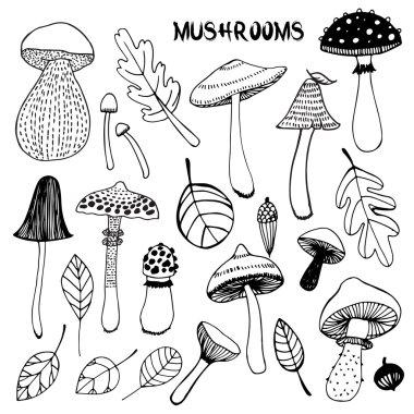 set of cartoon mushrooms