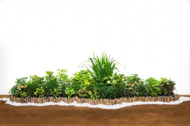 Decorative garden on a cobblestone wall isolated on white backgr