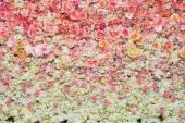 Fényképek gyönyörű virágok háttér esküvői jelenet