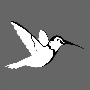 Logos, icons, vectors, hummingbirds in black and white icon