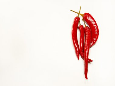 pods of hot red pepper isolated