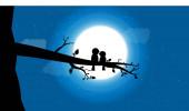 vektorové ptáky s měsíčním svitem