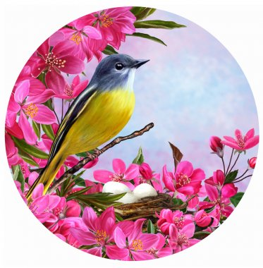 Round form. Yellow small bird on a branch of a blossoming apple tree in spring red paradise. Circle.