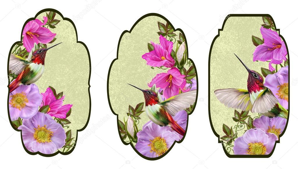 Carte Invitation De Visite Motif Fleurs Branche Floraison Rose Colibri Oiseau Petit Sauvage Image Sokolova